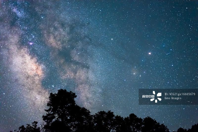 星空-非都市风光 天文学 植物 树林 银河系 夜晚 神秘 北半球 太空 天空