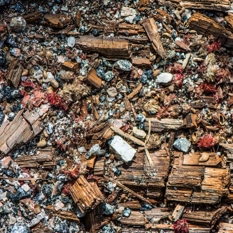 种子 材料 垃圾 式样 堆肥 肮脏的 毁灭的 无人 纹理 纹理效果 岩石 多