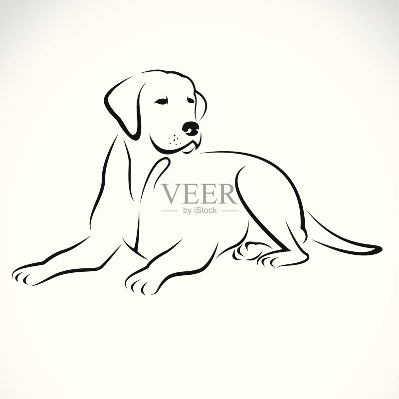收集 符号 草图 自然 黄色 计算机制图 狗 纯种犬 背景 小狗 犬科的 寻