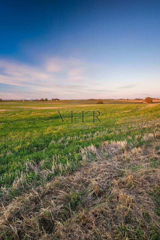 田野-秋天 谷类 草地 陆地 设计 植物 光 小麦 天空 裸麦 自然 景观设计