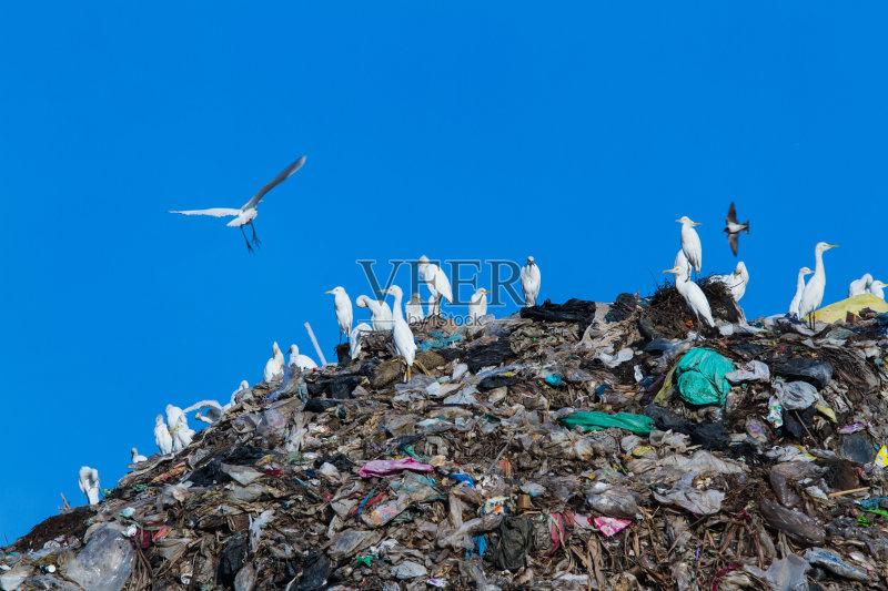 费 环境 山 垃圾 凌乱 被抛弃的 肮脏的 天空 垃圾场 废旧汽车场 白昼
