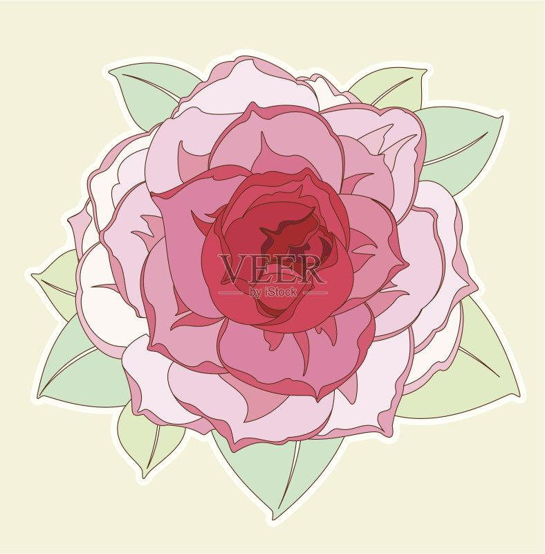 铅笔画 牡丹 设计 高雅 一个物体 叶子 植物 式样 仅一朵花 花纹 脆弱 装