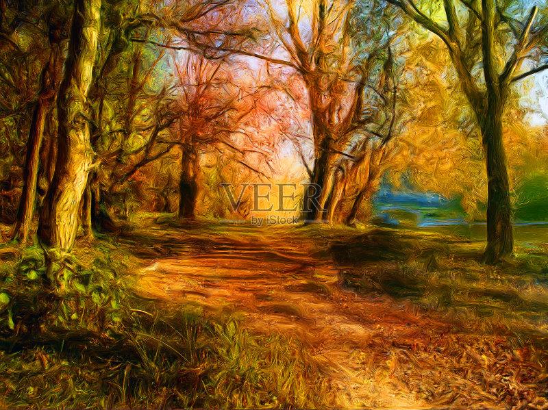 风景画-秋天 黎明 草原 叶子 阴影 植物 路 枝 自然 黄色 白昼 黄昏 单行