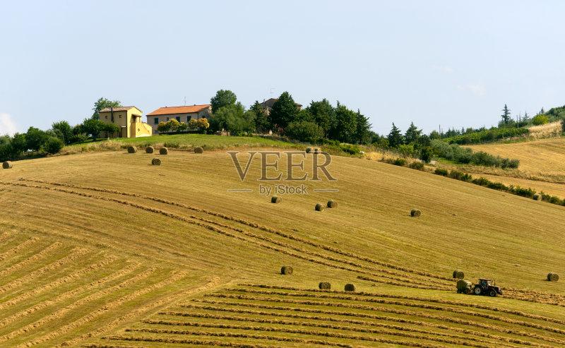 户外 农舍 田地 已经垦殖的土地 绿色 田园风光 拖拉机 西欧 意大利