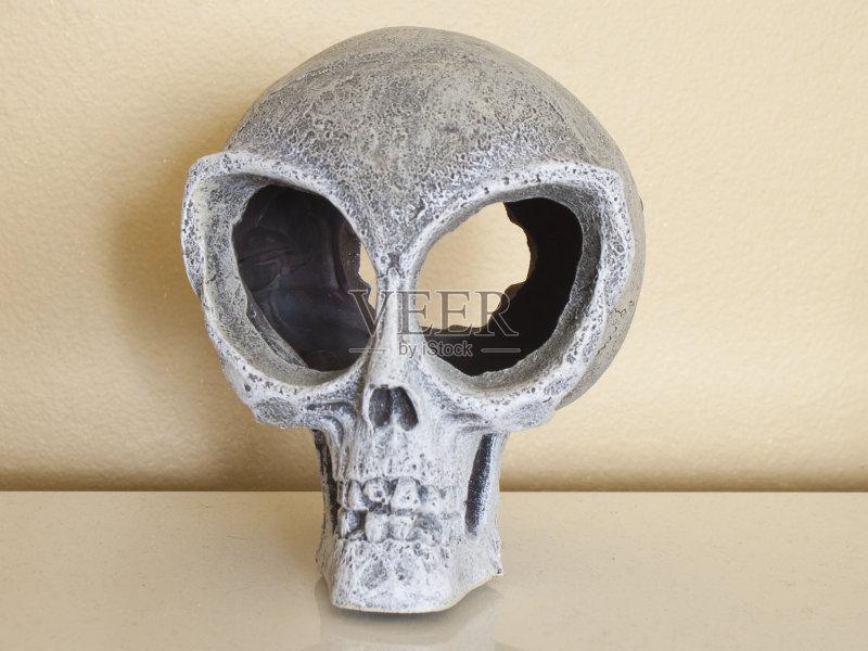 动物骨 颅骨 外星人 人头骨 动物眼睛 动物躯体的组成部分