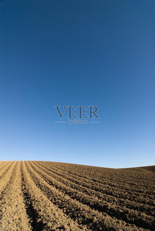 泥土 开端 田地 陆地 已经垦殖的土地 生长 种植 耕地 农场 天空 蓝色 农