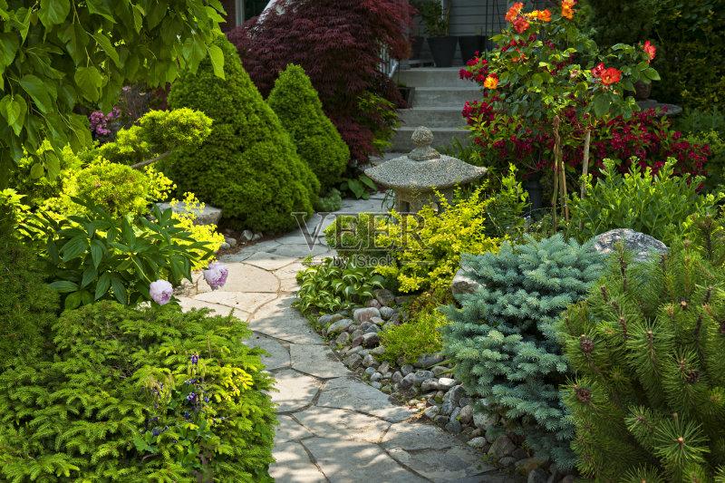 观设计 绿色 花园路 植物 禅宗 春天 夏天 自然 枝繁叶茂 无人 花 庭院