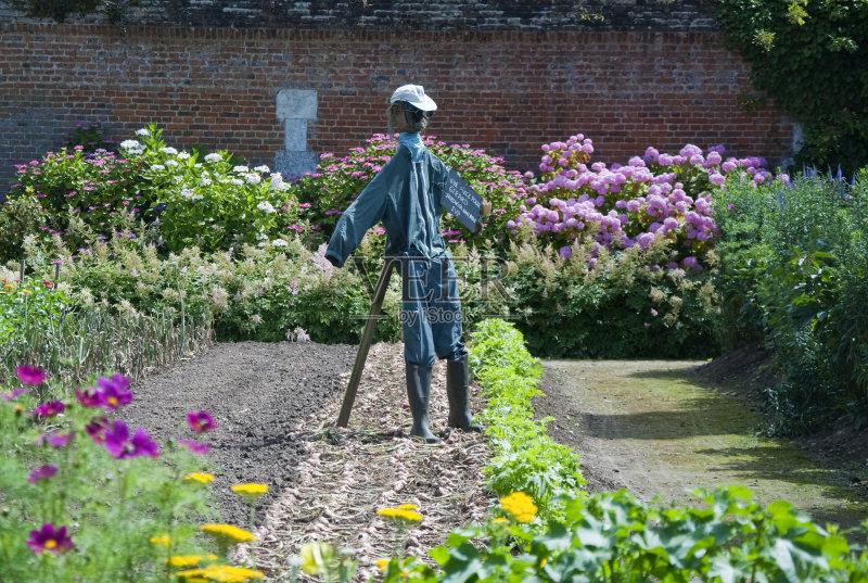 花园-砖 蔬菜 菜园 住宅房间 墙 法国 无人 洋葱 砖墙 厨房 花 城堡 保护