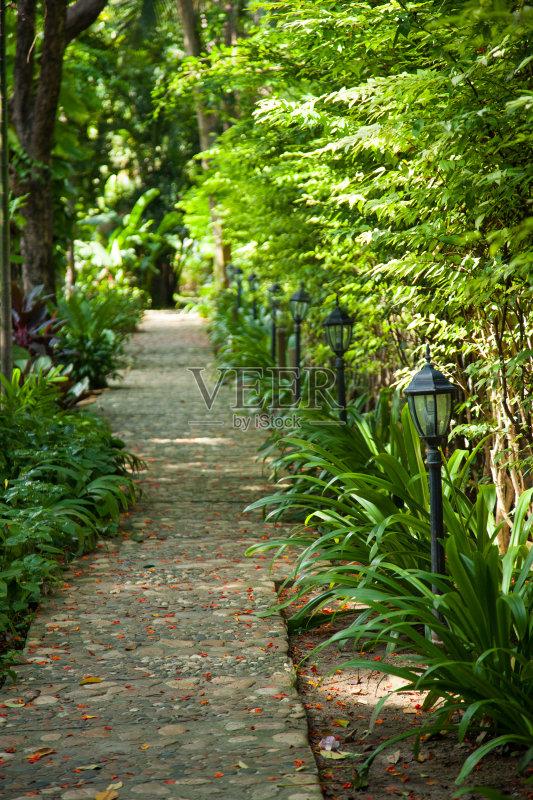 花园-秋天 人 小路 步行 叶子 夏天 自然 景观设计 无人 园艺 人行道 风景
