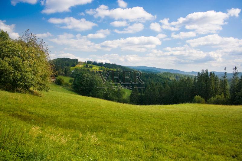 彩饱和 草 云景 背景 非都市风光 户外 色彩鲜艳 旅游 田地 自然美 森林图片