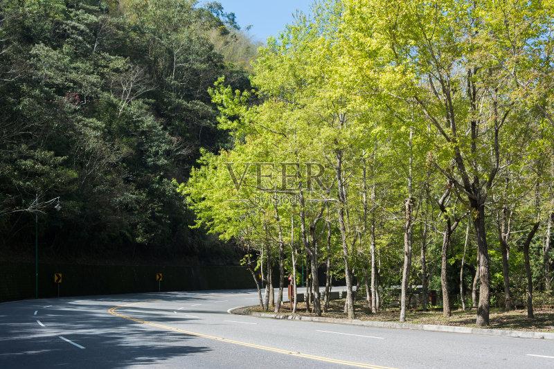 无人 亚洲 风景 树 季节 台湾 街道 户外图片