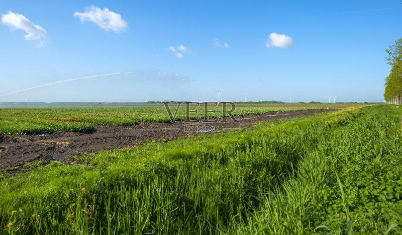 田野-水下落 生长 风轮机 积雨云 自然 景观设计 林荫大道 农业 生活方