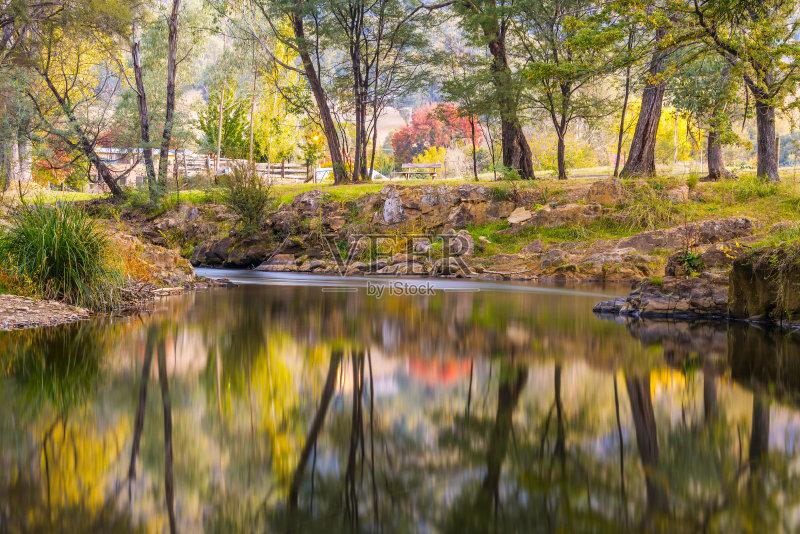 色 十一月 背景 湖 户外 色彩鲜艳 橡树 森林 思考 澳大利亚 田园风光 图片