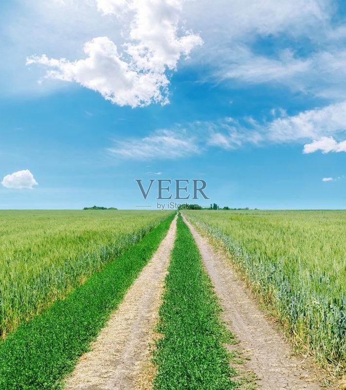 田野-泥土 乡村路 草地 陆地 白色 成一排 晴朗 光 路 肮脏的 天空 自然