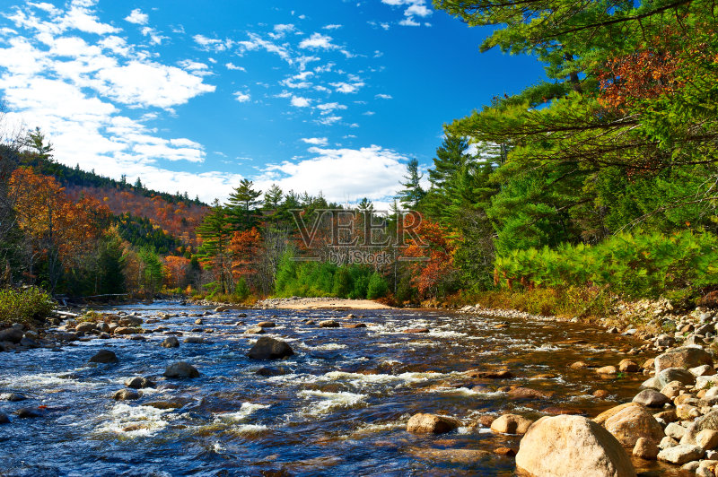 景-树林 卡斯基德山脉 秋天 流水 极端地形 山 灌木 叶子 主干路 阿把拉图片