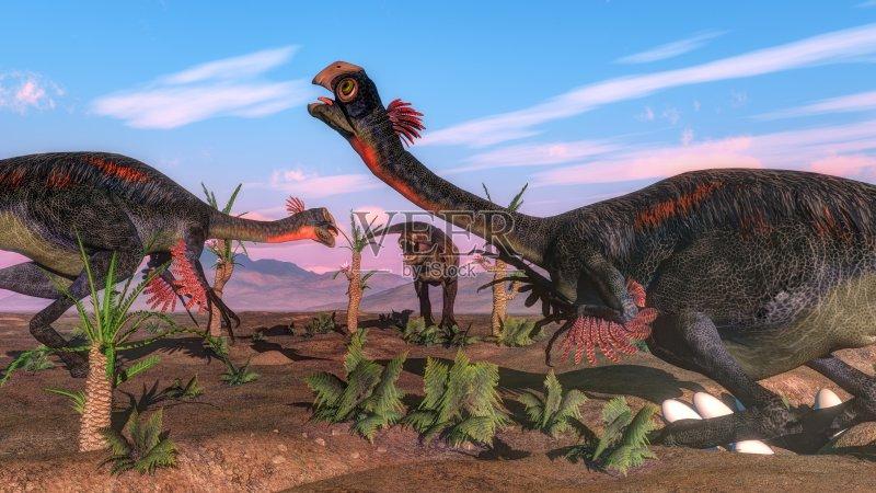 兽脚亚目食肉恐龙 雄性动物 雌性动物 形状 爬行纲 恐龙 进攻 自然 图片