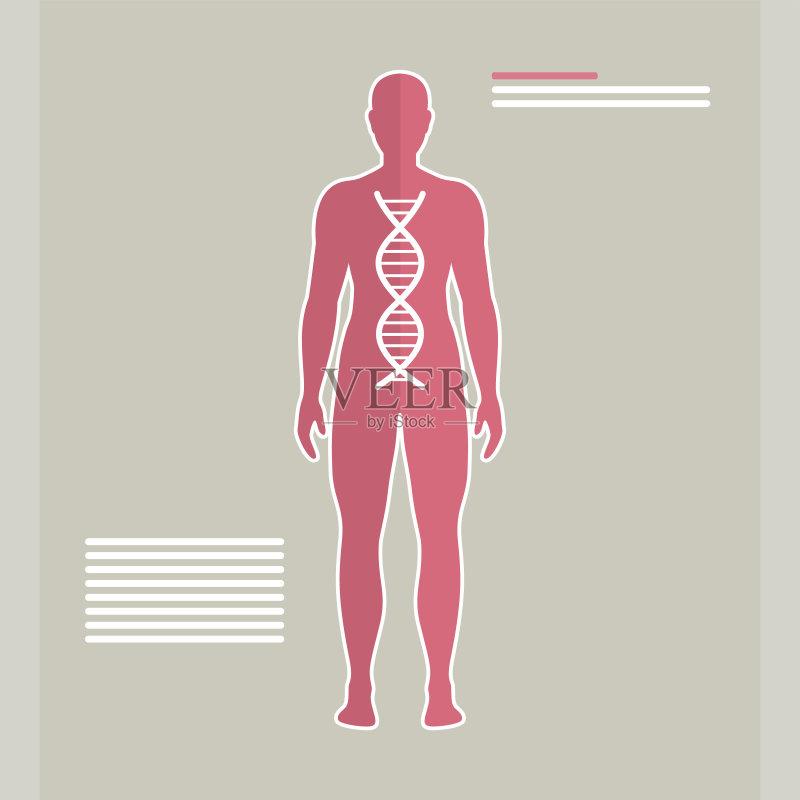 分子结构 男性形象 符号 形状 螺旋 科学 技术 人类形象 生活方式 染色