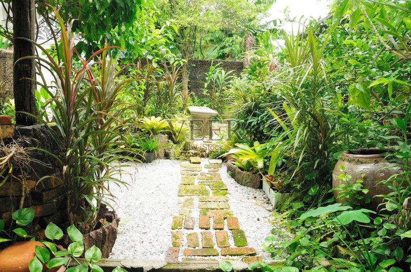 花园-秋天 木制 空中走廊 狗 夏天 自然 无人 树桩 装饰 生活方式 小的