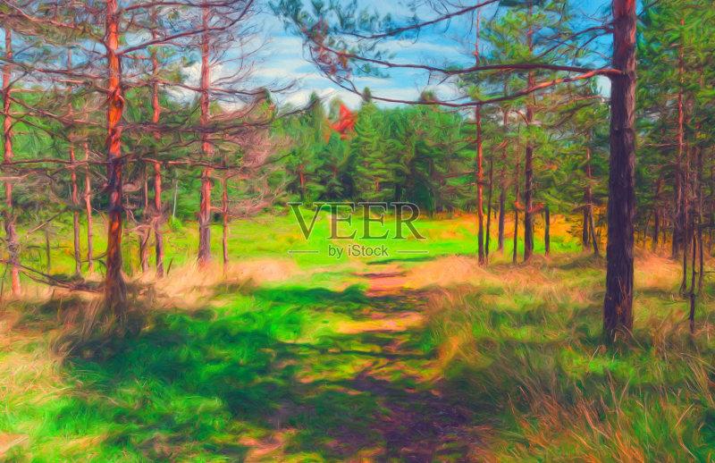 风景画-树林 小路 秋天 明亮 植物 路 高大的 天空 自然 景观设计 单行道