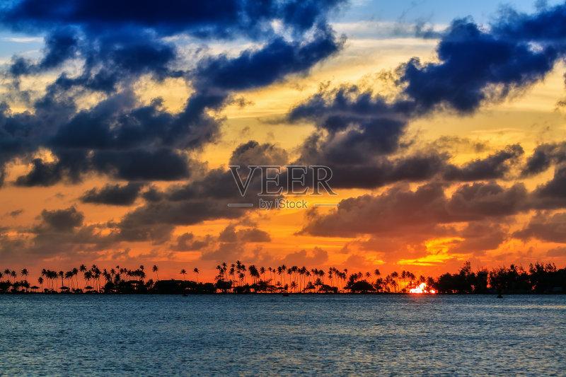 旅途 美洲 海景 光 波多黎各 太平洋 曙暮光 天空 太阳 棕榈树 黄色 自图片