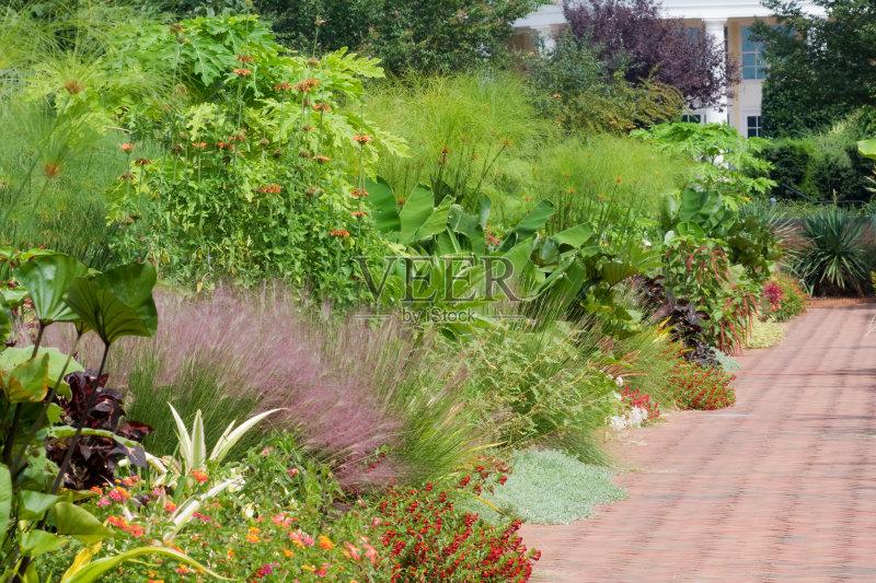 路 建筑结构 花园路 植物 花坛 仅一朵花 自然 建筑外部 装饰 旅行 季节
