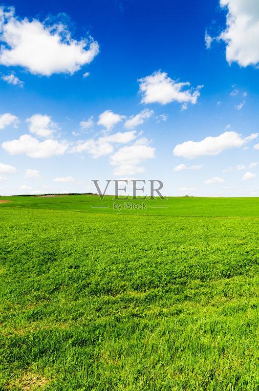 田野-草地 陆地 环境 白色 山 植物 光 天空 太阳 自然 平原 白昼 农业 地