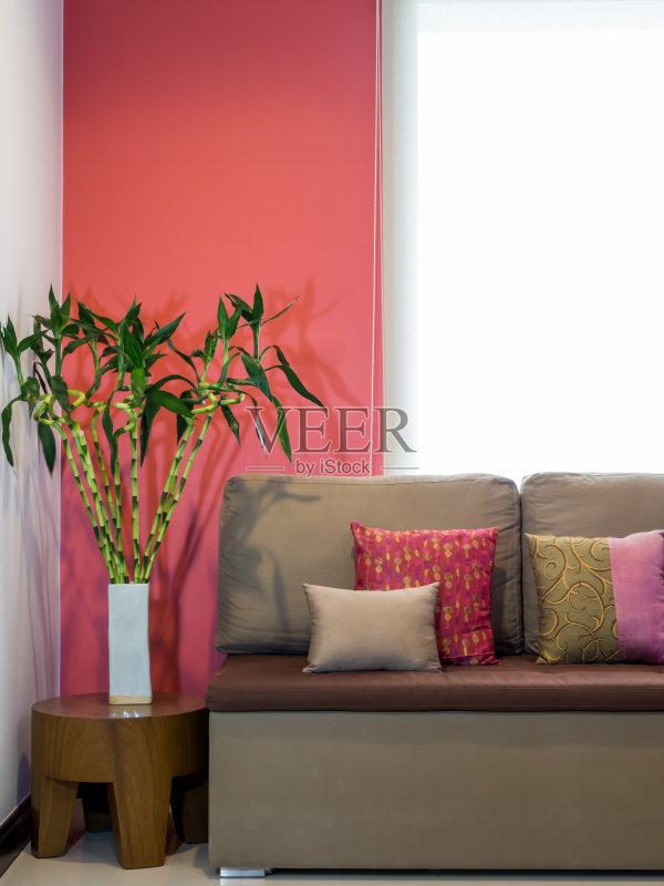 物 枕头 墙 家具 花瓶 富贵竹 自己动手 亚洲 装饰 室内 窗帘 生活方式