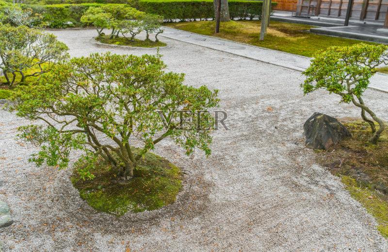 花园-白昼 无人 岩石 树 星和园 草 户外