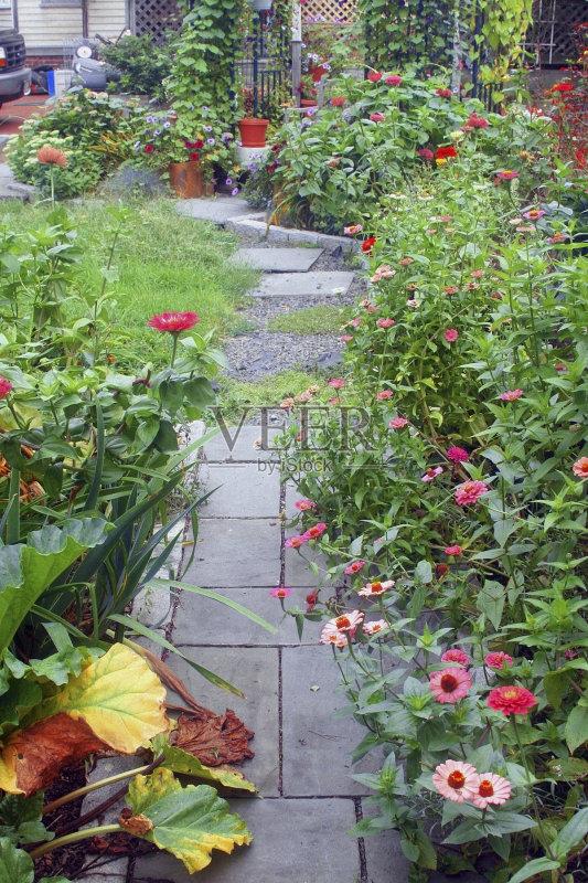 自然美 绿色 花园路 花头 红色 花坛 垫脚石 夏天 自然 景观设计 白昼