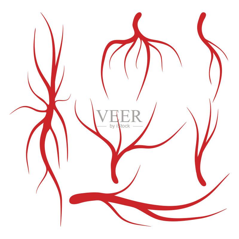 血液 弯曲 剪贴画 布置 生物学 动脉 人的眼睛 绘画插图 图标 标志 艺